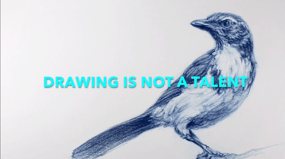 Best skillshare classes - THE ART & SCIENCE OF DRAWING / Week 1: Basic Skills / Day 1: How to Begin