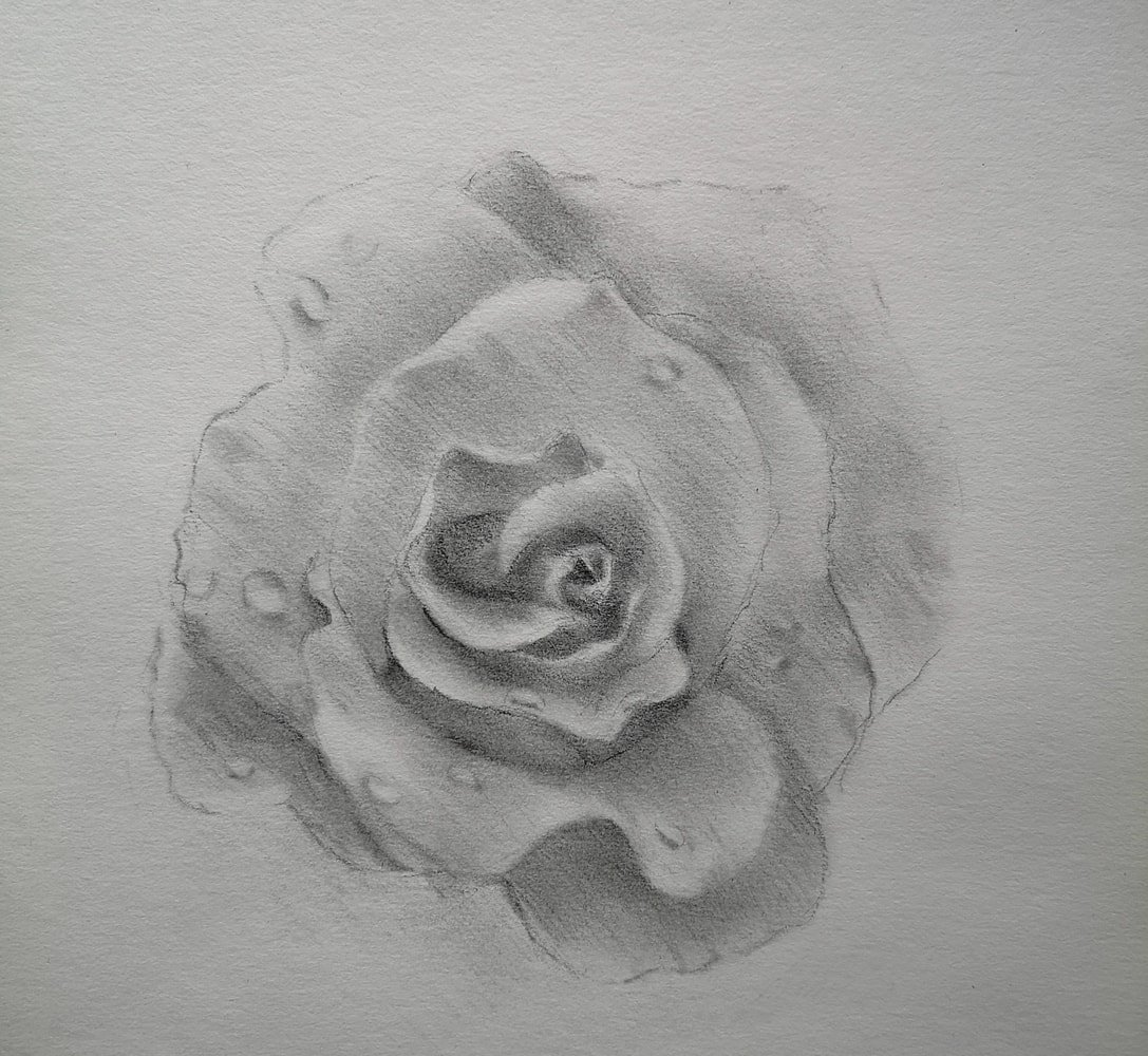 How to draw a rose - easy step by step tutorial